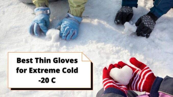 Best Thin Gloves for Extreme Cold -20 C